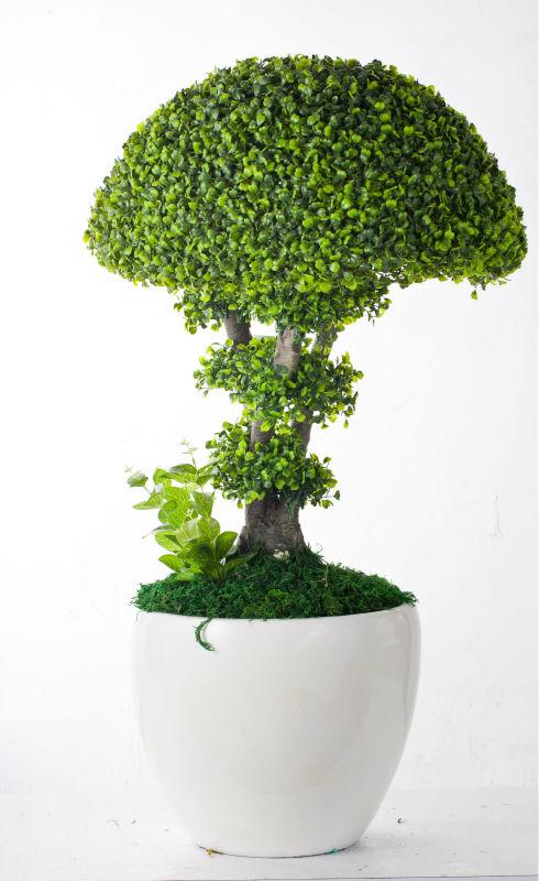 2014 decora o home vaso de planta artificial vendedor for Plantas decorativas de exterior