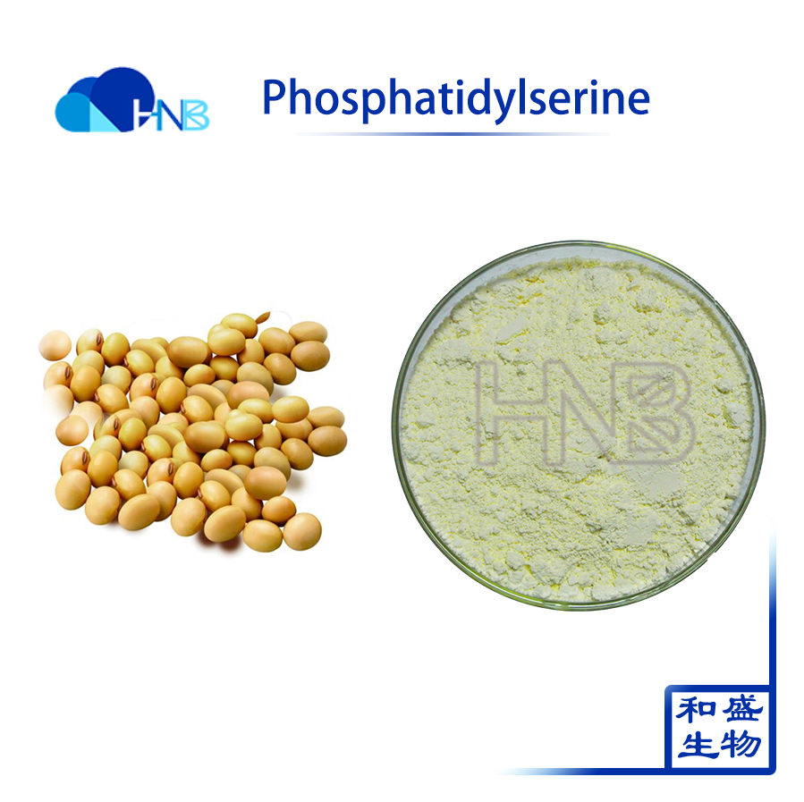 GMP Factory Supply Intelligent Nutrient Phosphatidylserine PS CAS No.:51446-62-9