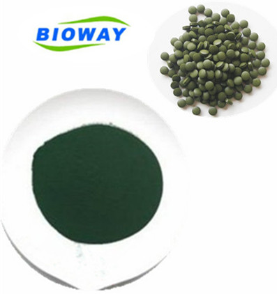 ISO and HACCP certified factory Provide Pure Natual spirulina <strong>powder</strong>