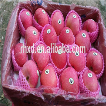 Own Orchards Direct Supply Fresh Fruit Red Fuji Apple factory price