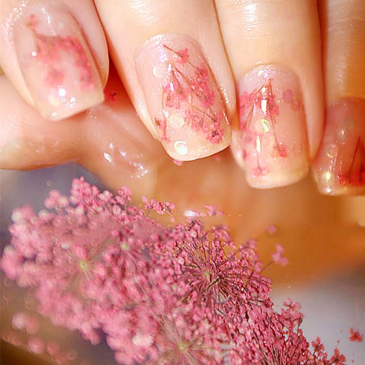 12 Colors Hot Sale Dry Flower Designs Beauty Dried Flower Nail Art