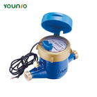 Younio Pulse Output Reed Switch Remote Reading Water Meter