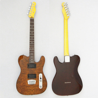 OEM Customized Service Basswood Body with 2 Single Coil Pickups Electric Guitar FTL-500