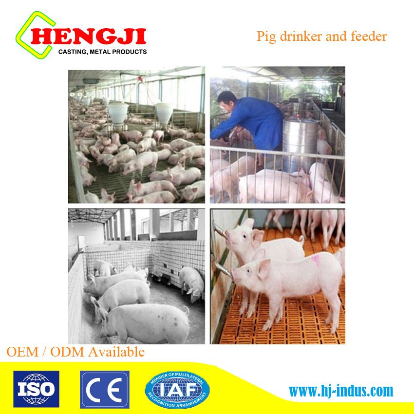 Hengji merk roestvrij staal en plastic varken feeder voor pig of finisher varken met grote prijs