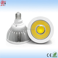 Popular Product Epistar COB LED PAR 30 Light, 50000hours long life span 30w par 30 led light bulb, Recessed 230V LED Par Light
