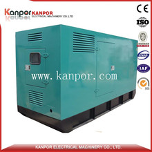 Life-Long Service 80KW 100KVA Natural Gas silent generator for home use