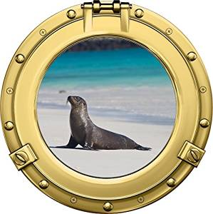 Porthole Ship Ocean Window Sea View TURTLE #2 ROUND Wall Sticker Decal Graphic