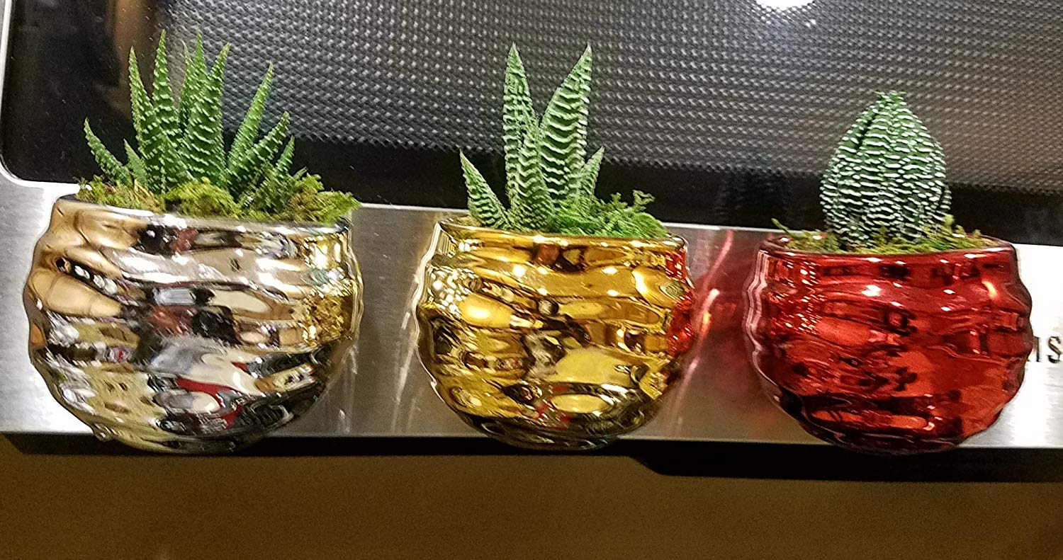 Set of 3 Silver, Gold, and Red Magnetic Magnetized Geometric Succulent Planters