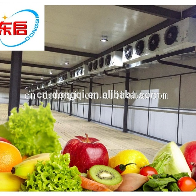 Brand new cold storage business plan with great price & food service business plan-Source quality food service business plan ...