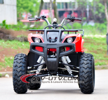 2016 Adults 800w 48v Electric ATV Battery Quad ATV