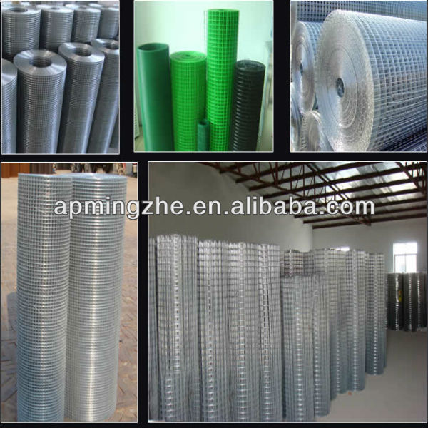 Bottom price smooth surface galvanized welded wire mesh netting