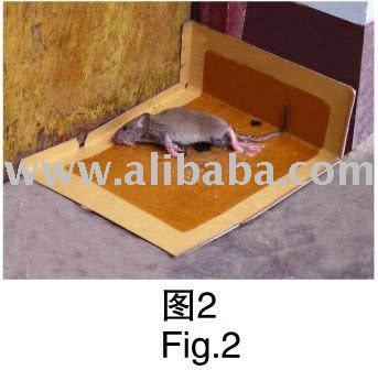 super collant colle carte pi ge de la souris lutte. Black Bedroom Furniture Sets. Home Design Ideas