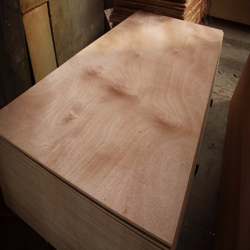 Top quality commercial plywood used for furniture plywood ash wood timber price