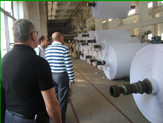 food grade pe coated paper for cup making