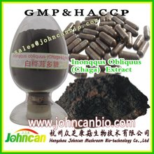 chaga extract anti diabetes