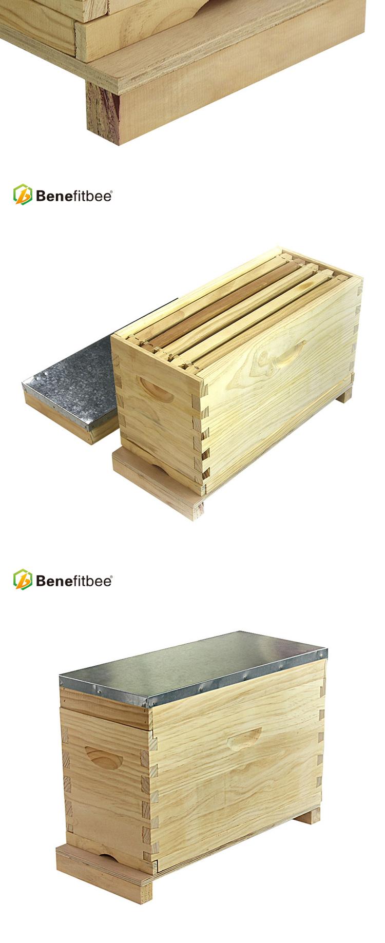 Professionelle Imkereiausrüstung Holz Beehive Rahmen Langstroth ...