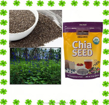 Factory Bulk Supply chia seed wholesale chia seed