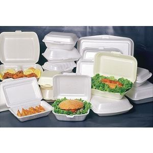 Biodegradable disposable foam packing food container