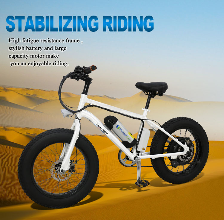20 inch wheel 36v 250w folding fat tire ebike