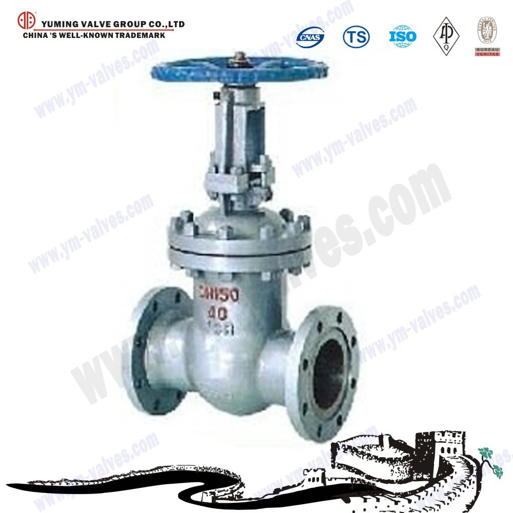 China Professional Manufacturer Flange Wcb Gate Valve Dn100