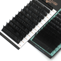 Lovely Mink Eyelashes Extension Individulal False Eyelash