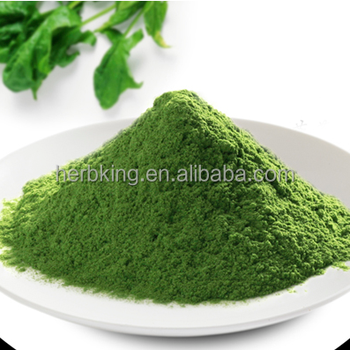 Copetative price and Quality Pure Natural dehydrated Spinach powder HERBKING