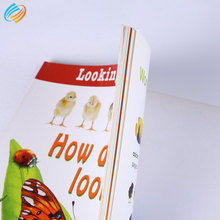 Custom Cheap Brochure Booklet Book Printing