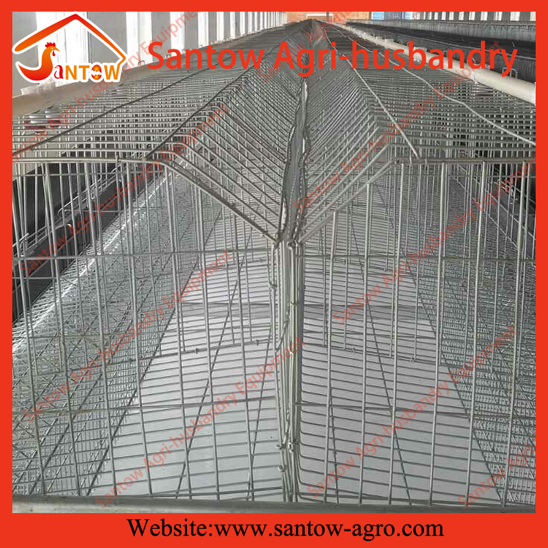 hot selling chicken coop fishing mesh