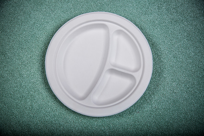 Various sizes Sugarcane fiber disposable compostable paper plates tableware