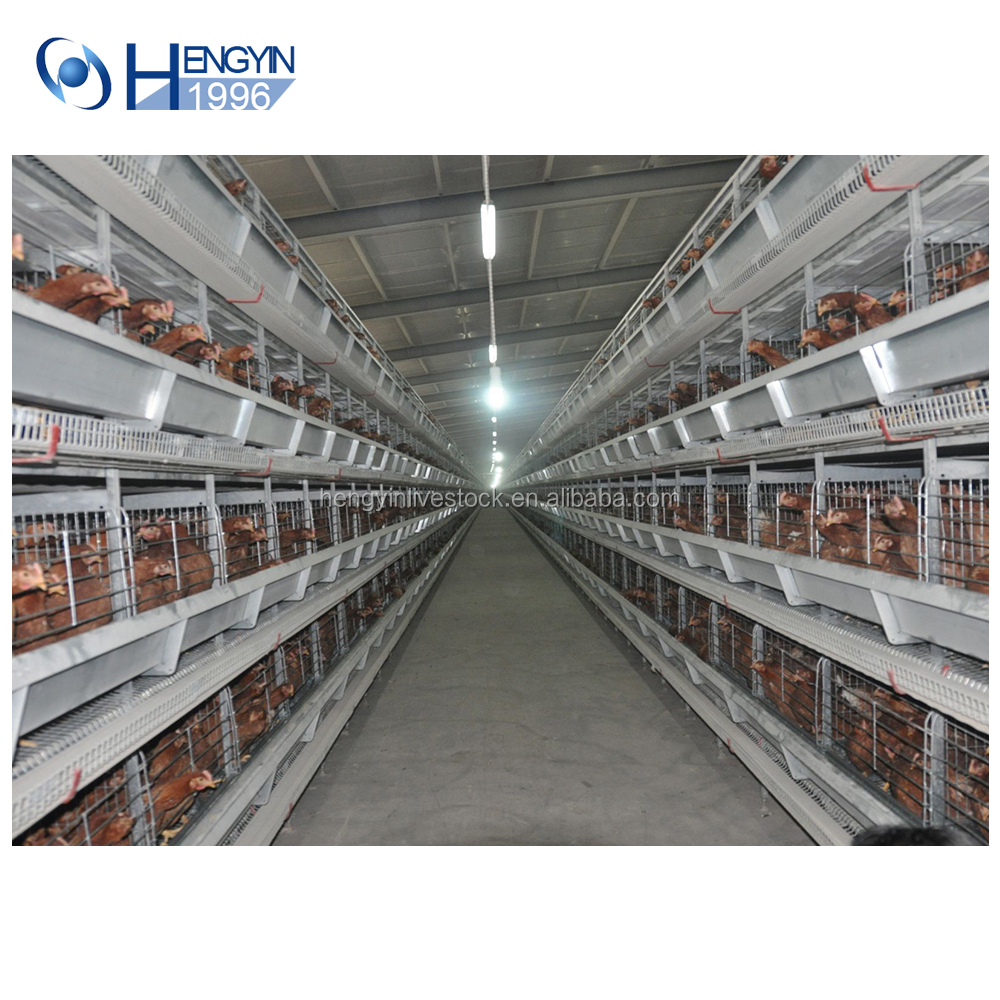 4 tier layer egg cages automatic layer chicken battery cage for chicken farm