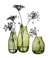 Wholesale glass vases bud vase cheap tall glass vases wholesale