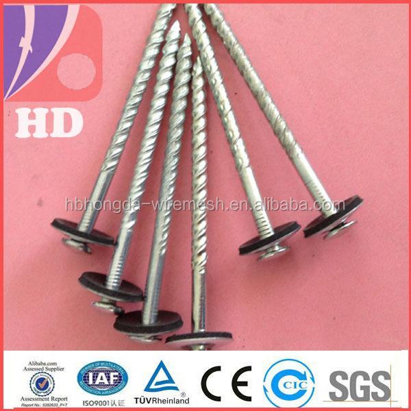 China Twisted Nails 3, China Twisted Nails 3 Manufacturers