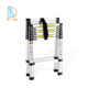 China wholesale high quality Double sided step ladder