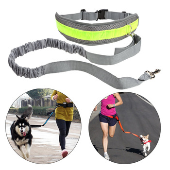Lovoyager Running Bungee hands free dog leash jogging leash with adjustable waist belt