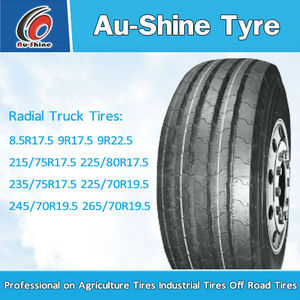 PRO 295/75r22.5 truck tires for Chicago, New York, Florida, Texas, California