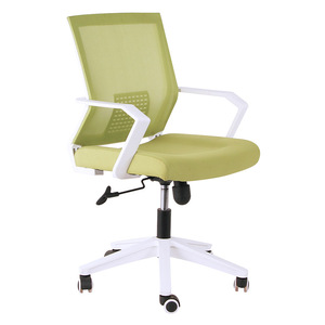Ergonomic fixed mesh office chair