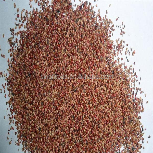 cao mei zhong zi bright color hot sale Red Strawberry Seed