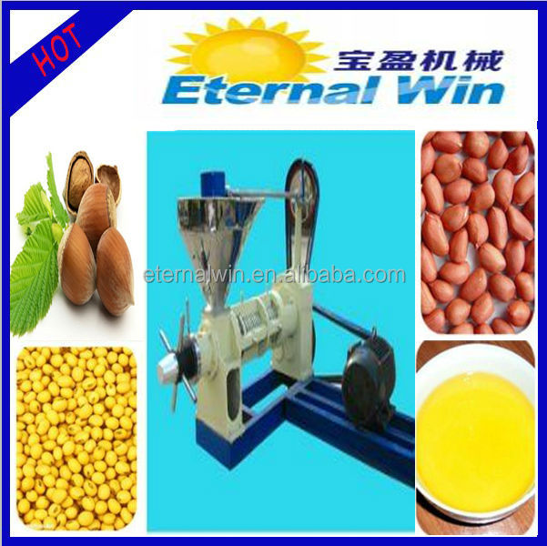 stainless steel material low cost oil press household(business at home)
