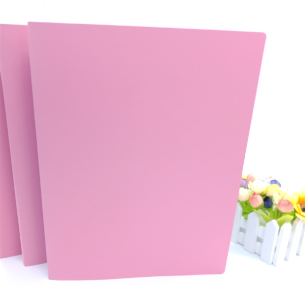 Wholesale custom promotional high quality stationery a4 plastic file folder for school and office