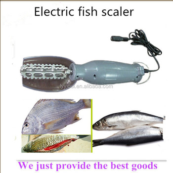 Best sale electric fish scaler for different kinds of for Best fish scaler