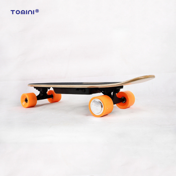 Diy Cheap Price Electric Skateboard Longboard Buy Electric