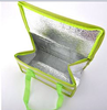 Insulated Bag/Thermal Bag/Hot Cold Bag