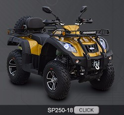 SP200-6 Shipao all new automatic 200cc quad bike
