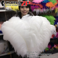 Leading Supplier ZPDECOR Factory Wholesale Size 70~75cm Top Quality White Ostrich Feathers
