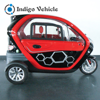 China New Hot Sale Electric Drift Trike for Adult