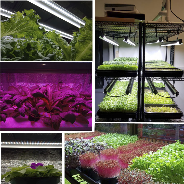china tower farming garden greenhouse T5 light vertical aeroponics indoor plant hydroponic LED growing system