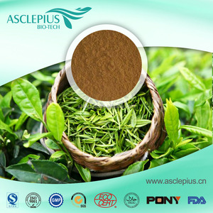Factory Supply Organic Green Tea Extract L Theanine , EGCG , Catechin