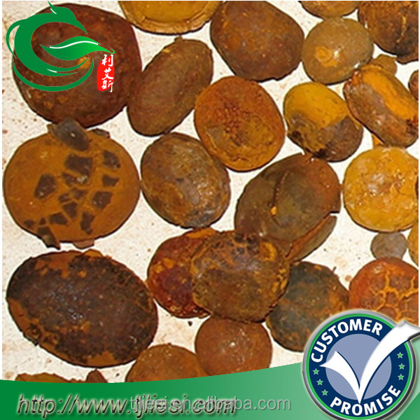 supply 2016 cow bezoar ox gallstones with low price
