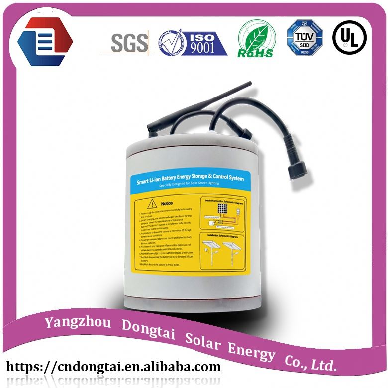 Hot sale electric tourist coach& golf car battery , lithium ion battery 40ah 80ah 50ah 60ah /LYLIBR12V80B376