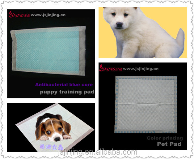 Fabricant approvisionnement Pet Pee Pads